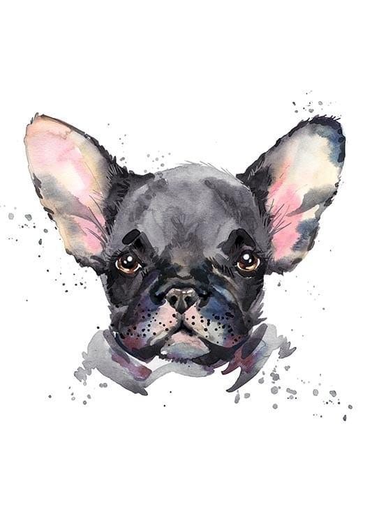 Affisch med en fransk bulldog, perfekt till ett barnrum
