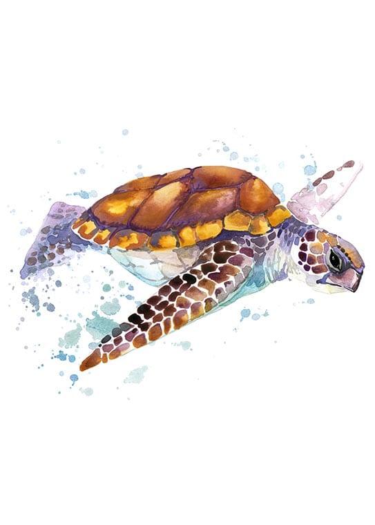 Affisch med en havssköldpadda, perfekt till ett barnrum