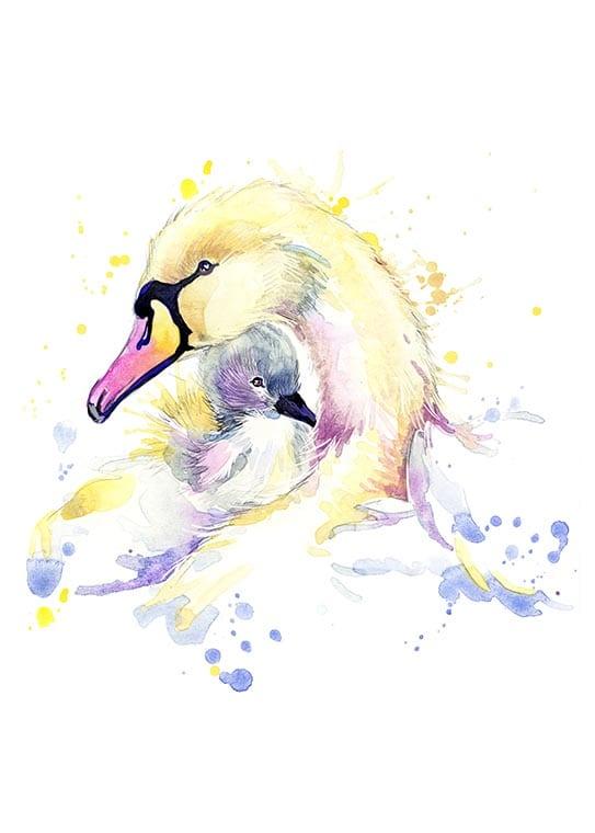Affisch med två svanar, perfekt till ett barnrum